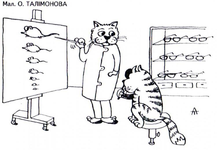 Картинка  про котов, мышей и офтальмологов