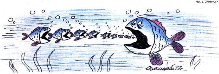 Картинка  про рыбу