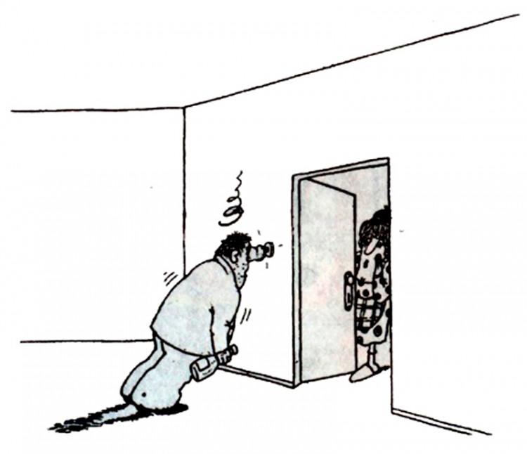 Картинка  про мужа, жену и пьяных
