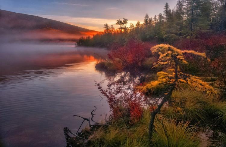 Фото прикол  про осень, озеро и туман