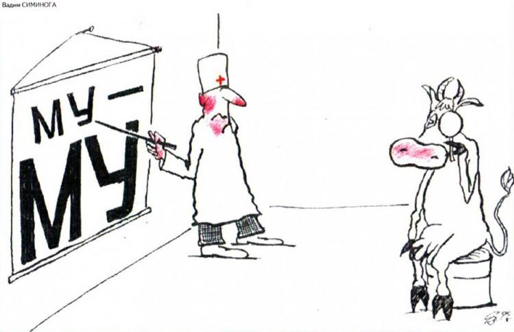Картинка  про офтальмологов и корову