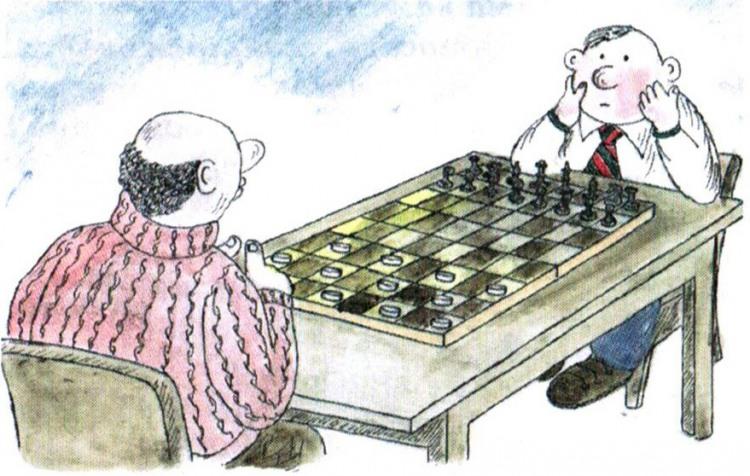 Картинка  про шахматы и шашки