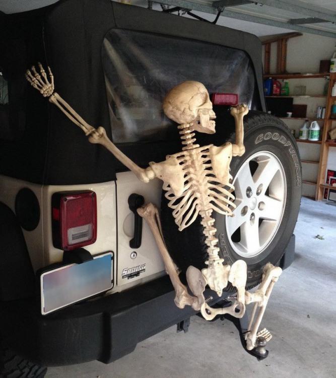 Фото прикол  про скелет черный