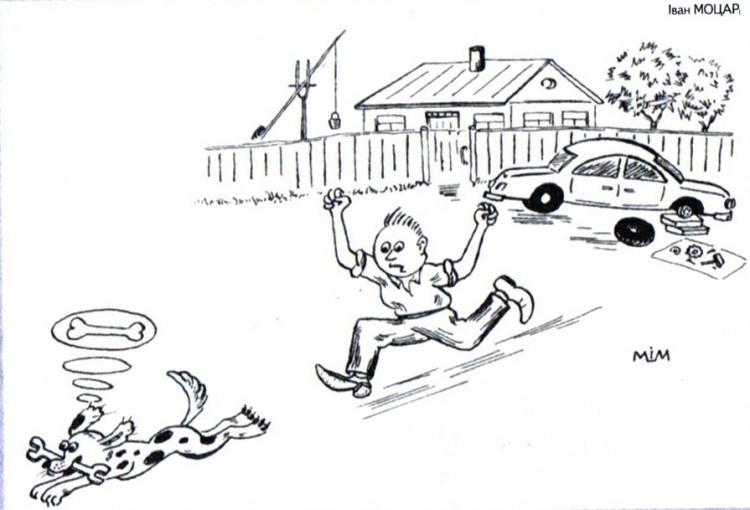 Картинка  про собак, ключ и кости