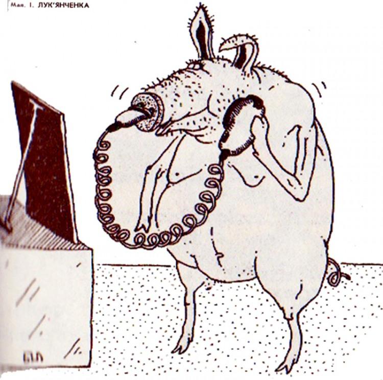 Картинка  про свиней и бритье