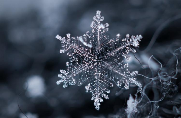 Фото прикол  про снежинки