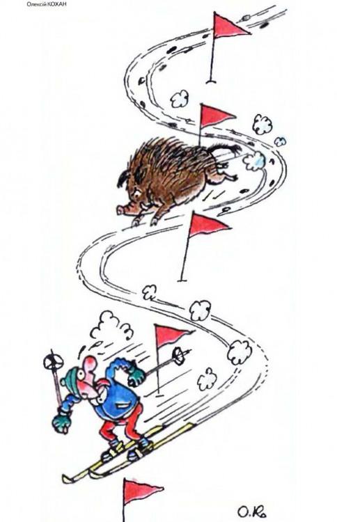 Картинка  про лыжников и кабанов