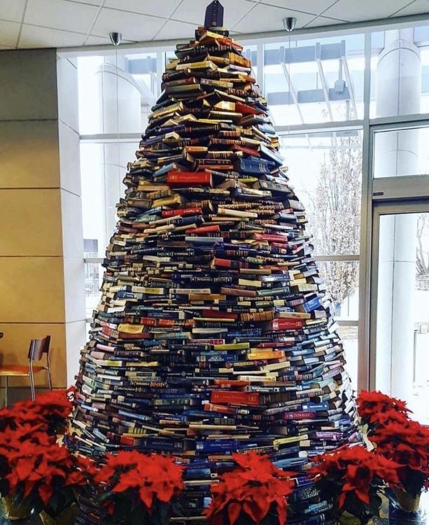 Фото прикол  про библиотеку, книги, ёлку и новый год