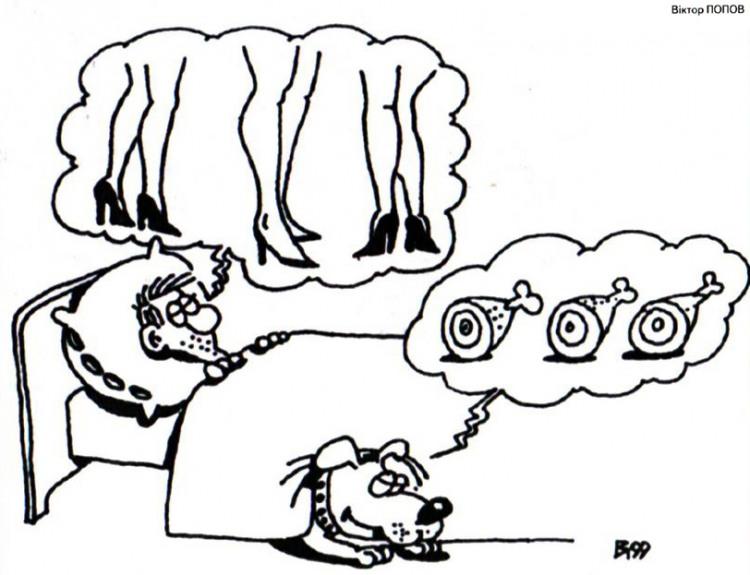 Картинка  про сон и собак
