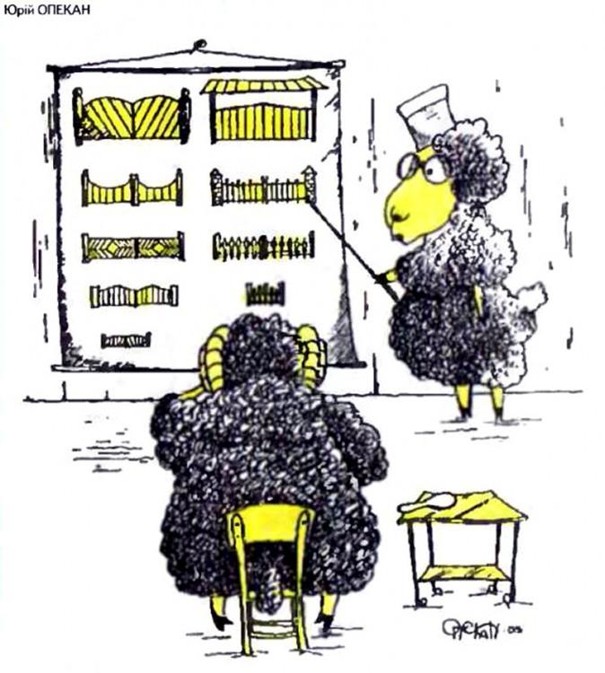 Картинка  про офтальмологов, баранов и ворота