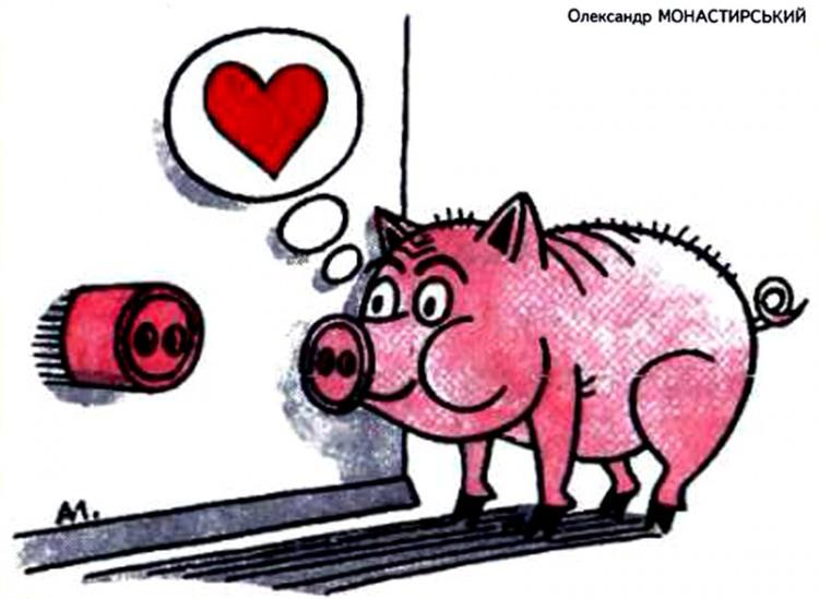 Картинка  про свиней и розетки
