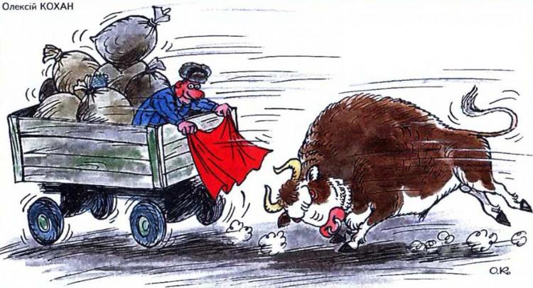 Картинка  про быка