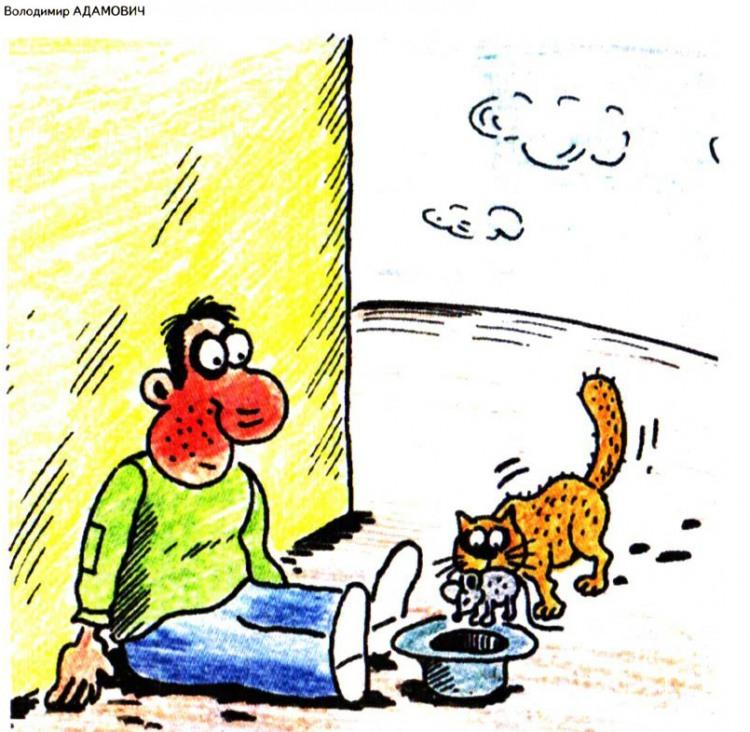 Картинка  про нищих и котов