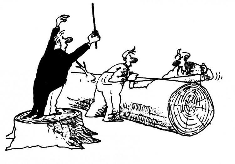 Картинка  про дирижеров