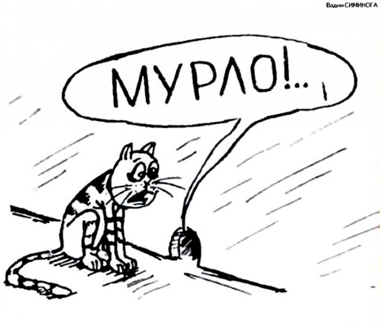 Картинка  про котов и мышей