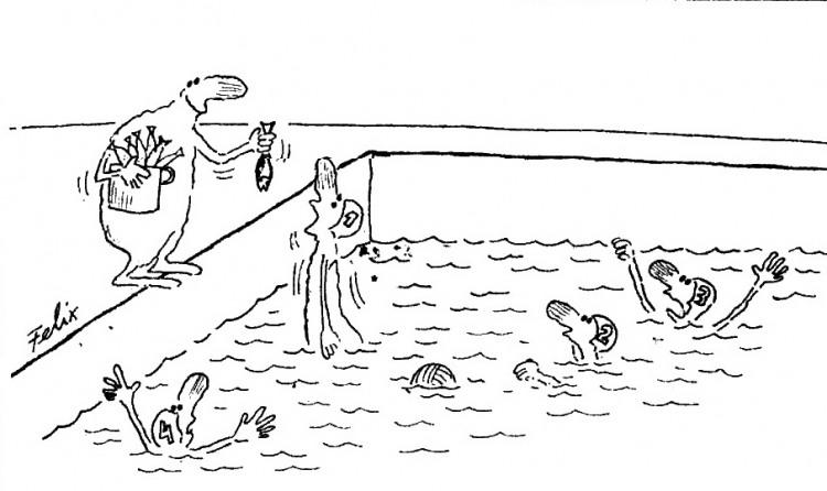 Картинка  про бассейн, пловцов и рыбу