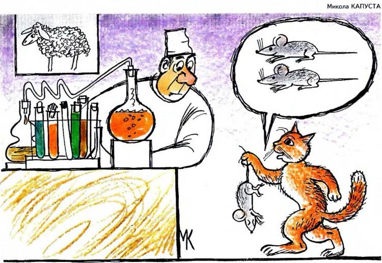 Картинка  про котов, мышей и учебу