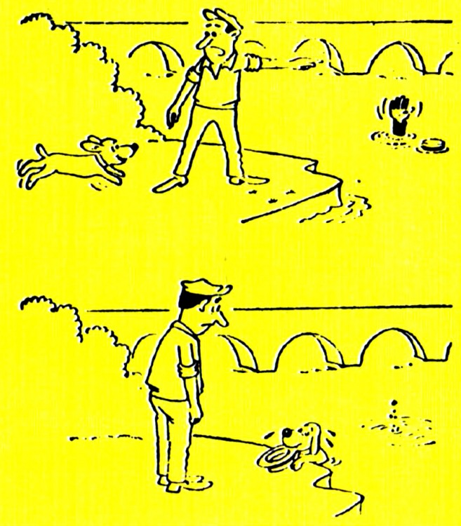 Картинка  про утопающих, собак, шапку черный