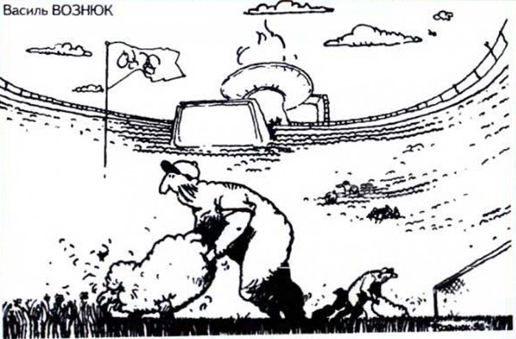 Картинка  про стадион и овец
