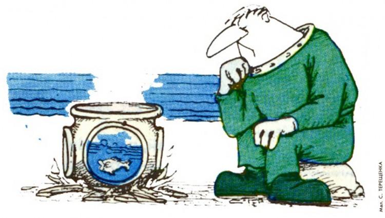 Картинка  про водолазов, рыбу и приготовление пищи