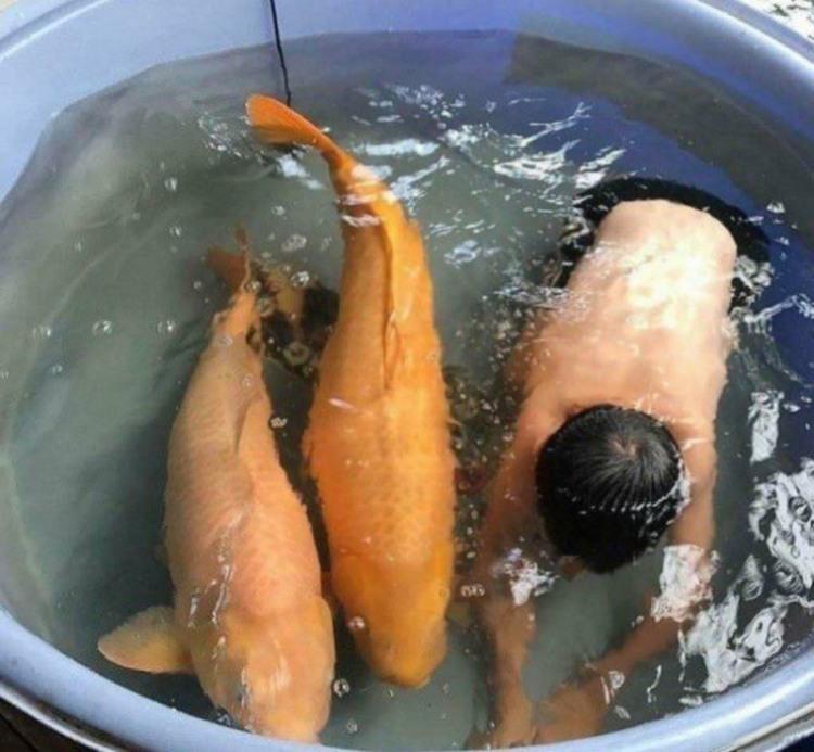 Фото прикол  про детей и рыбу
