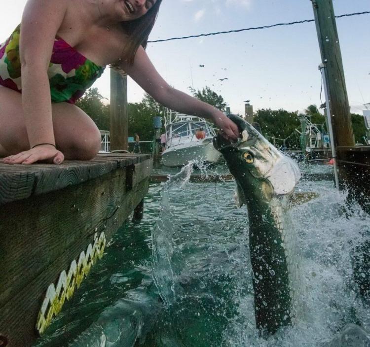 Фото прикол  про девушек и рыбу