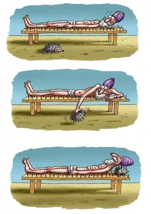 Картинка  про йогу и ежей