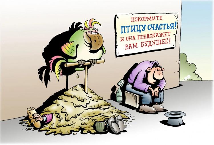 Картинка  про нищих, попугаев и кал